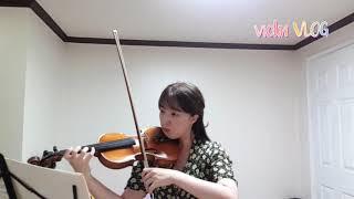 [취미로그] 10년 바이올린 취미생 / 아마추어바이올린…