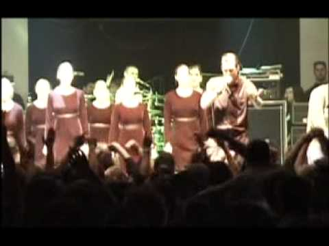 Dropkick Murphys - Live On St Patrick'S Day 2002