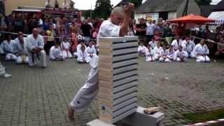 Karate Skill: 14 Bricks