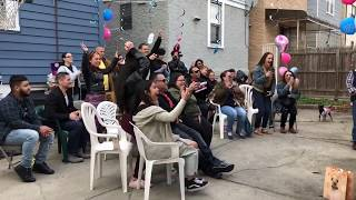 Download Gender Reveal gameshow prank Mp3 and Videos
