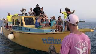 Sunset Cruise - Utila Dive Center