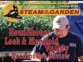 Steam in the Garden Preview Issue #158