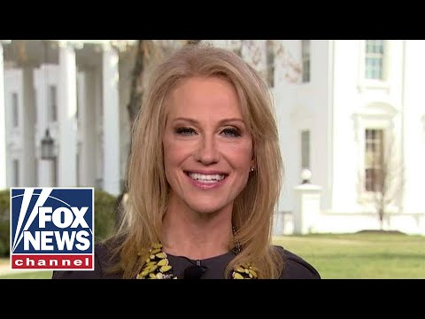 Kellyanne Conway to congress: Do your job and secure the border