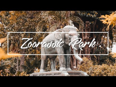 Zoorassic Park | Saigon Zoo and Botanical Gardens (Jody Hong Films)