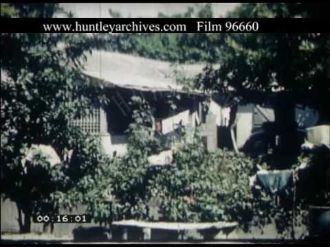 Poor Jamaican Housing, 1960s - Film 96660