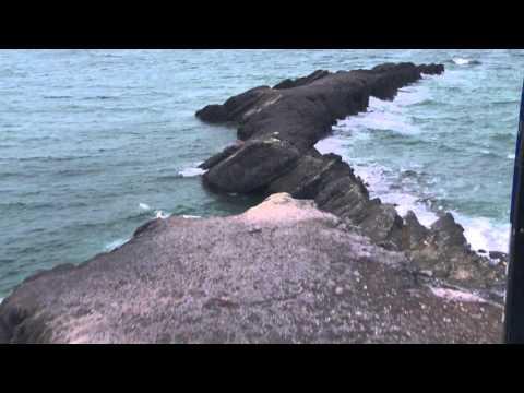 RI1PV/p - Vaygach island - Polar Bears