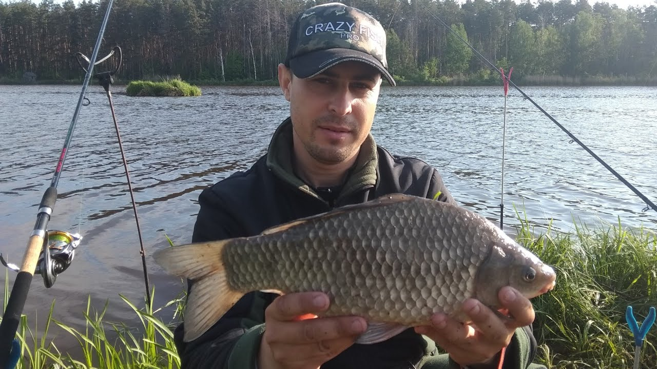 Алексей фадеев ловля карпа на фидер