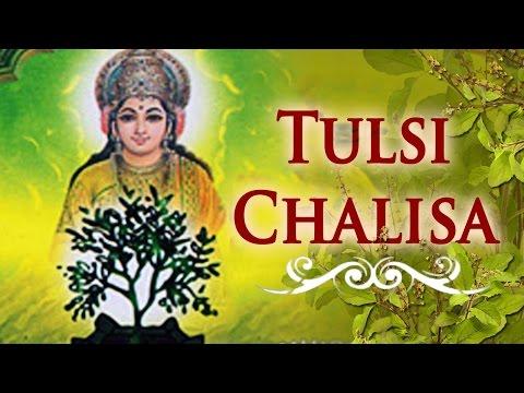 Tulsi Chalisa | Tulsi Vivah Special | Tulsi Bhajan | Bhakti Songs
