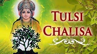 Tulsi chalisa | tulsi vivah special | kartik poornima 2017 | bhakti songs