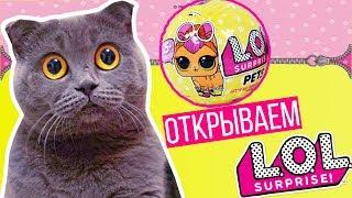 PETS - LOL PETS! КИСА ОТКРЫВАЕТ ШАР ЛОЛ ПЕТС