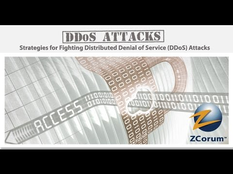 Strategies for Fighting Distributed Denial of Service DDoS Attacks