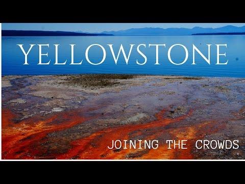 Visiting Yellowstone National Park Morton Style - East   MOTM VLOG #58