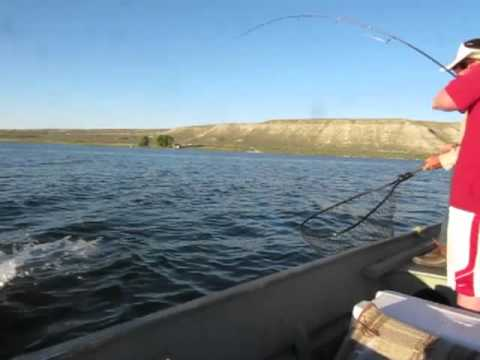 3.5 wiper out of south fork reservoir in elko,nv
