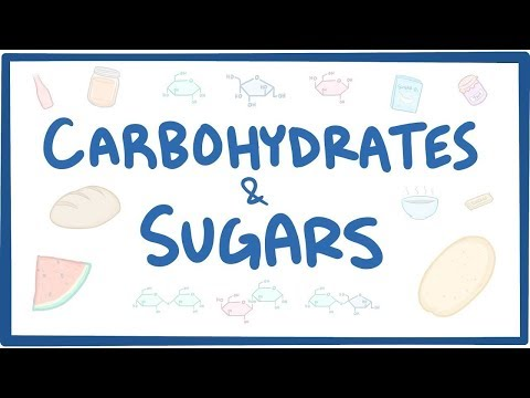 Carbohydrates & sugars