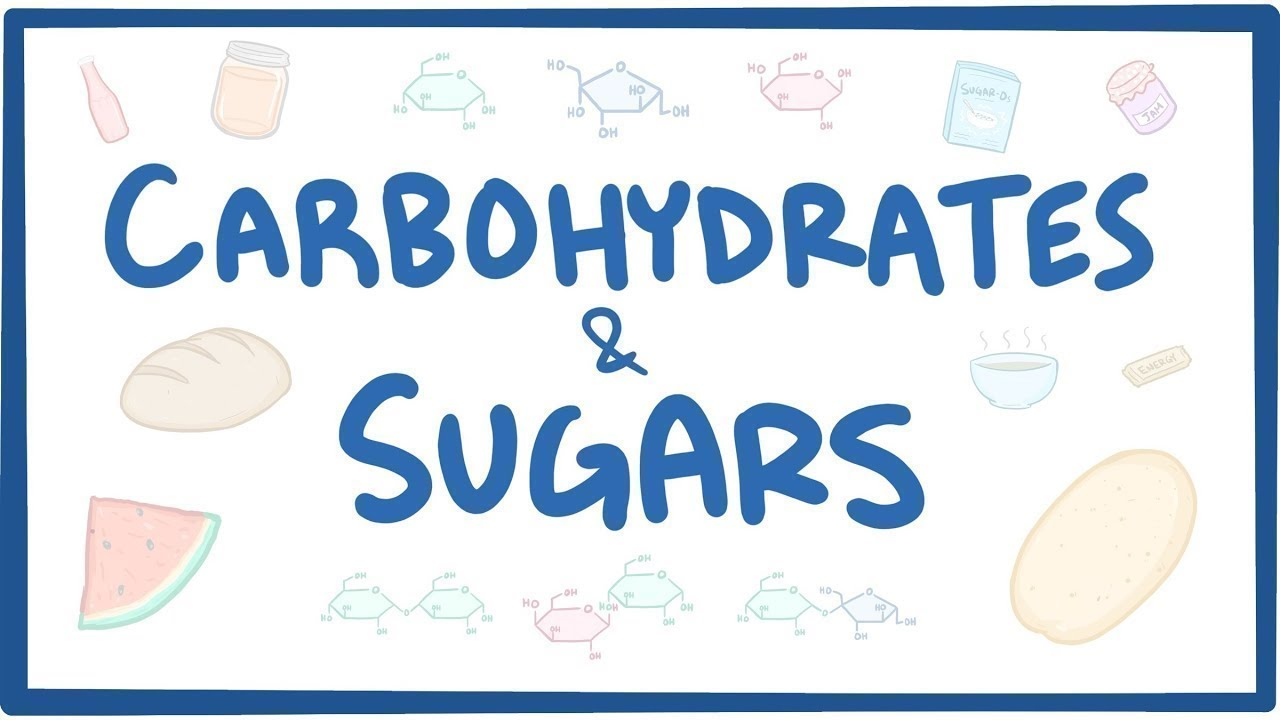Download Carbohydrates & sugars - biochemistry