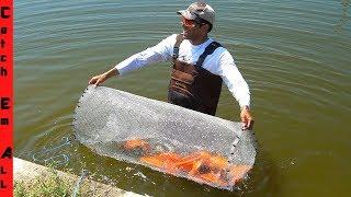 FISH TRAP in SECRET POND TUNNEL!