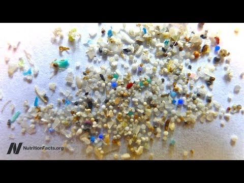How Much Microplastic Is Found In Fish Fillets?
