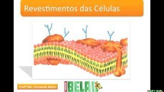 BIOLOGIA MAIS - Revestimento das células