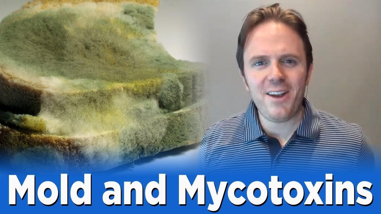 mold Archives - Texas Functional Medicine and Nutrition