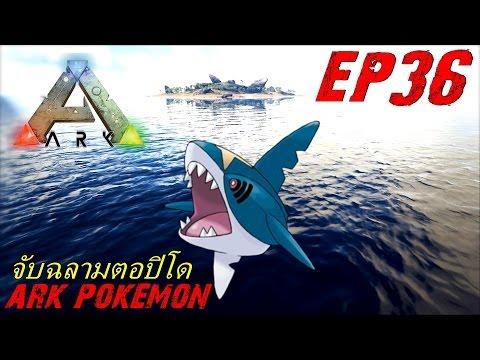 BGZ - ARK Pokemon EP#36 จับฉลามตอปิโด Sharpedo