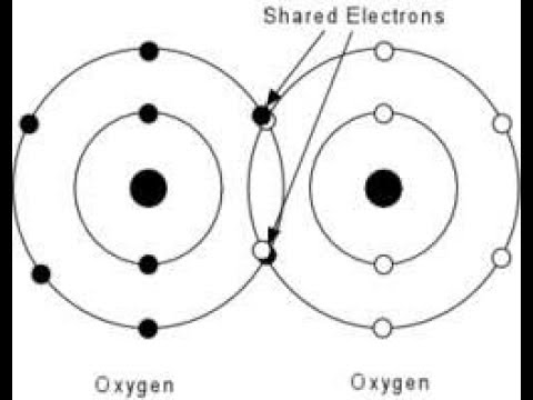 Types Of Covalent Bond In Urdu Polar And Nonpolar Covalent Bond