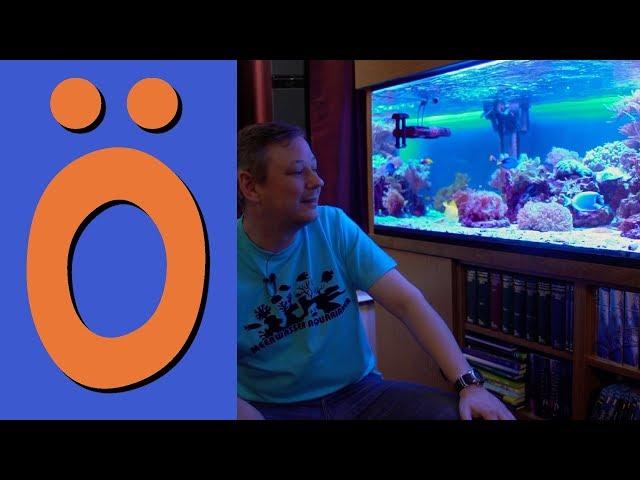 S01 E08 - Rayne's Wörld - Live - zu Gast Band Nashville Suckers, Koch kocht, Meerwasser Aquarium