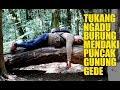 Maksa Banget Tukang Ngadu Burung Mendaki Gunung Gede Sampe Puncak Via Putri  Mp3 - Mp4 Download
