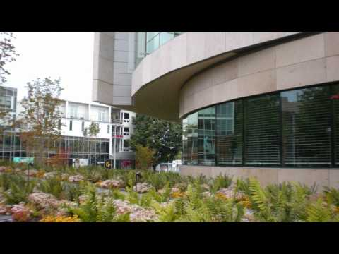 Architectural Inspiration - Bill and Melinda Gates Foundation