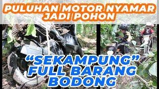 """TERUNGKAP !! Modus Kampung Bodong """"NGAKALI"""" Tim Cobra"""