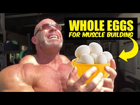 Nutrition to Build Muscle and Lose Fat (Protein in Whole Egg)
