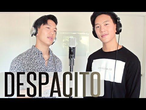 Luis Fonsi - Despacito ft. Daddy Yankee & Justin Bieber (Remix Audio) | Jrodtwins Cover