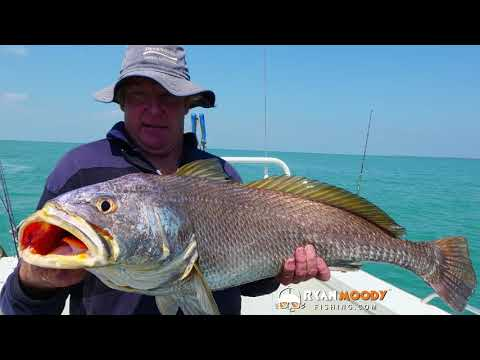 Fishing Charter From Darwin Catching Barra, Black Jew And Sailfish Part 1