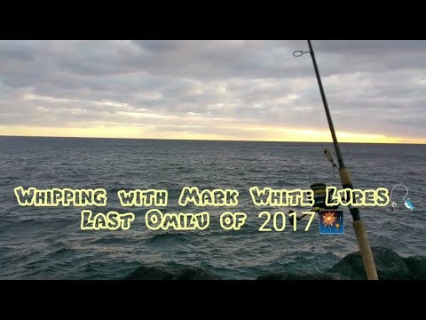 Whipping with Mark White Lures, Last Omilu of 2017!