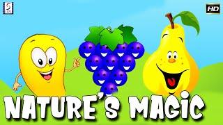 Fun And Learn Series for Kids in English | Nature's Magic | Kids Cartoon Mania