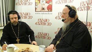 Радио «Радонеж». Протоиерей Димитрий Смирнов. Видеозапись прямого эфира от 2016.12.17
