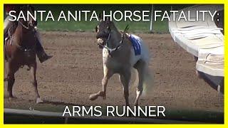 horse-fatality-at-santa-anita-arms-runner-march-31-2019