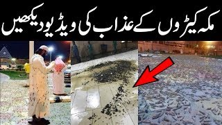 Black Swarm in Makkah For The First Time In History | Islam Advisor