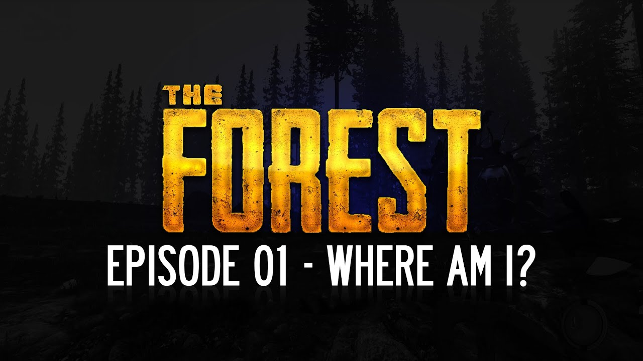 Image result for where am i, forest