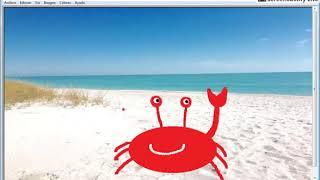 Kreslení legrační krab na pláži. Kresby, jazyky a písničky pro děti, Batoľatá, děti.