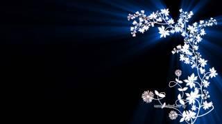 Видео обои - Цветущая сакура(Скачать видео можно на странице: http://all4os.ru/personalization/video_wall/2040-video-oboi-cvetuschaya-sakura.html., 2013-09-11T19:50:50.000Z)