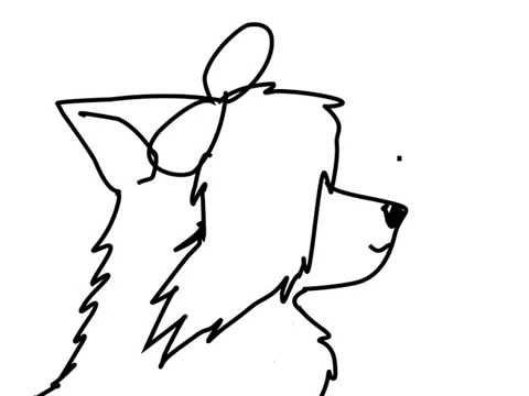 Wolf Animation Cute
