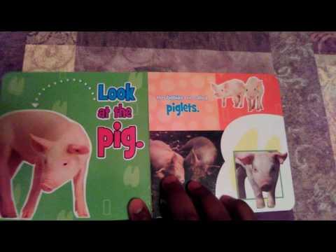 Barnyard Babies By Kim Mitzo Thompson & Karen Mitzo Hilderbrand - Books for kids read aloud!