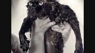 Pussy wet Bald teen