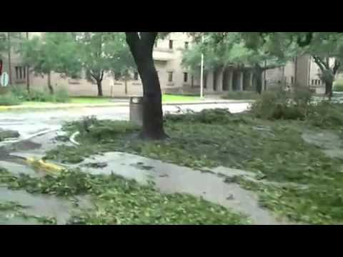 Gustav at LSU campus - the day after