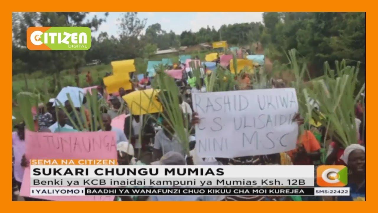Download Wakulima wa miwa wafanya maandano ya amani kuunga mkono Benki ya KCB huko Mumias