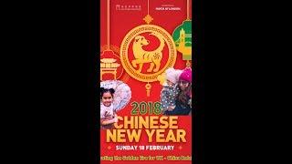 CNY 2018 - London UK - Chinese New Year - Year of the Dog