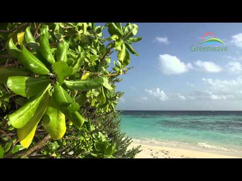 Tropical Island - Maldives - 4K