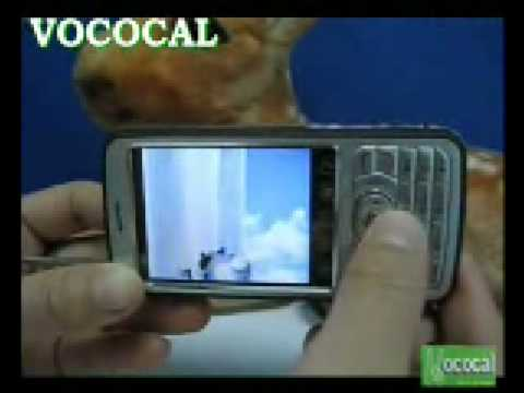 Great TV Functions With This TV-Mobile Phone