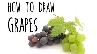 How to draw Grapes - drawing fruits with kids