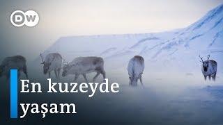 Svalbard: En kuzeydeki yerleşim yeri - DW Türkçe